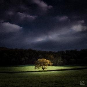 Richard Heddington Photography