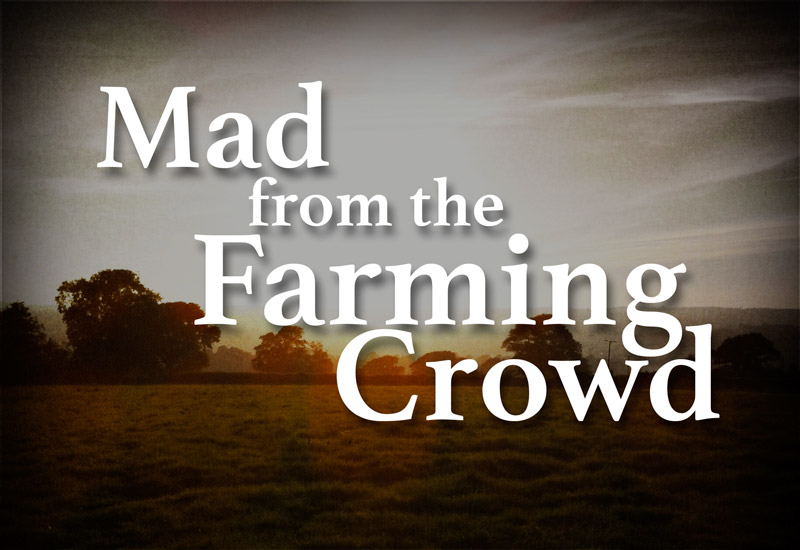 Mad from the farming crowd