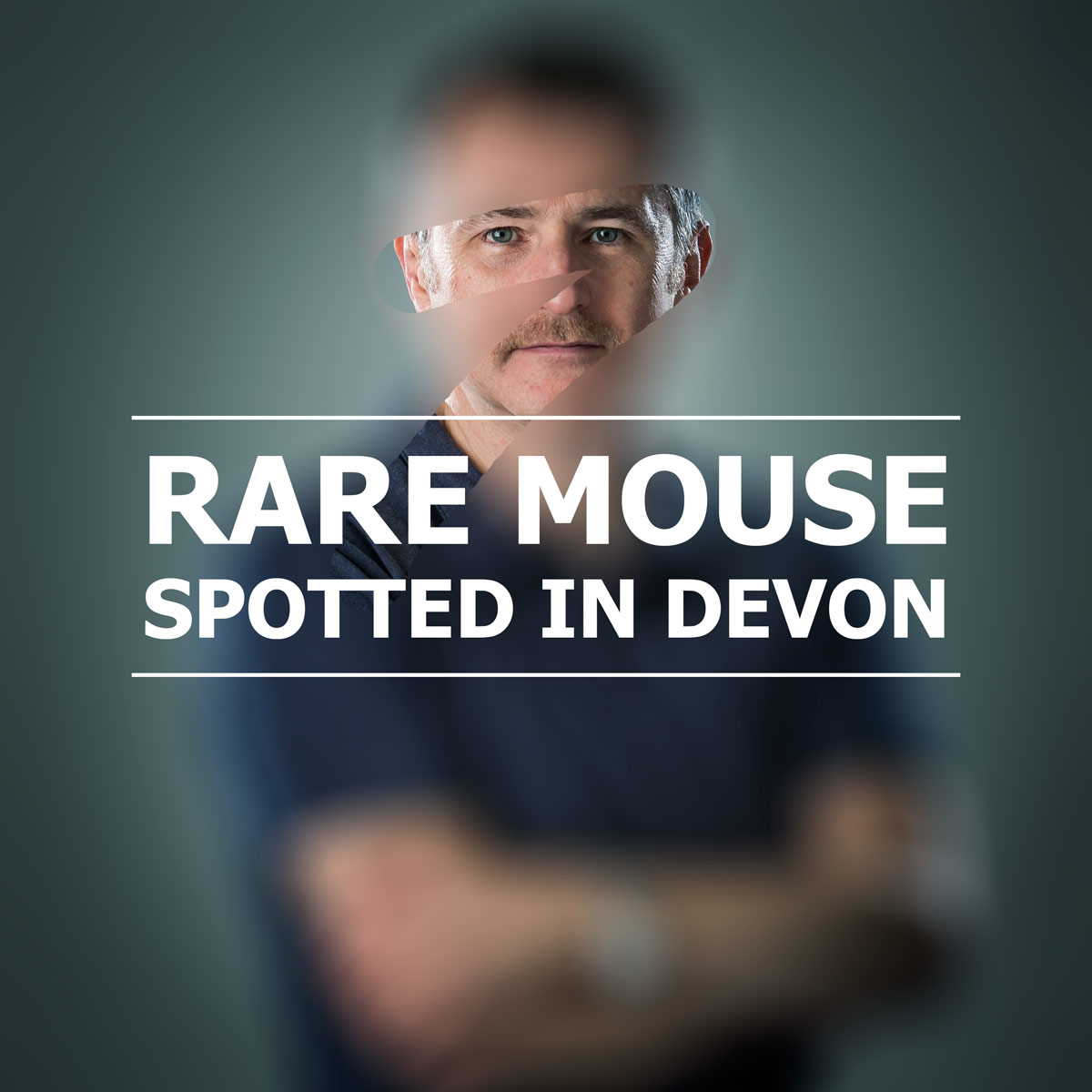 Rare mouse spotted in Devon. It must be Movember 2014.