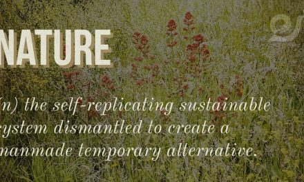 NATURE – A definition of the ecosystem in which we live.
